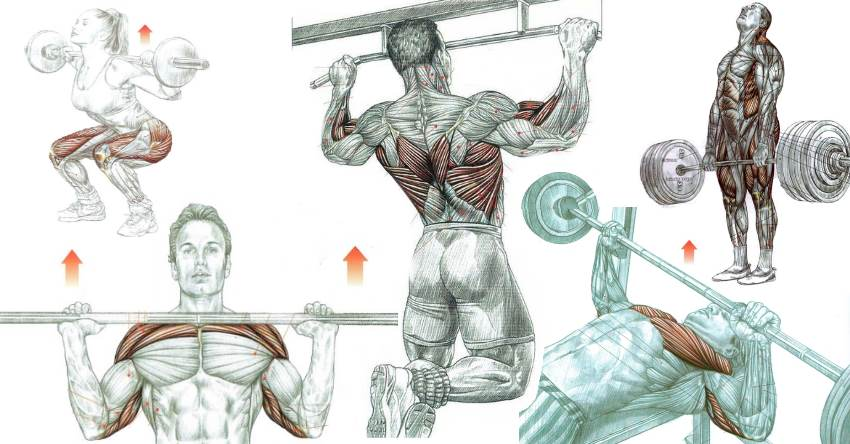 Image result for compound exercises