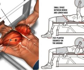 tips-to-improve-your-bench-press