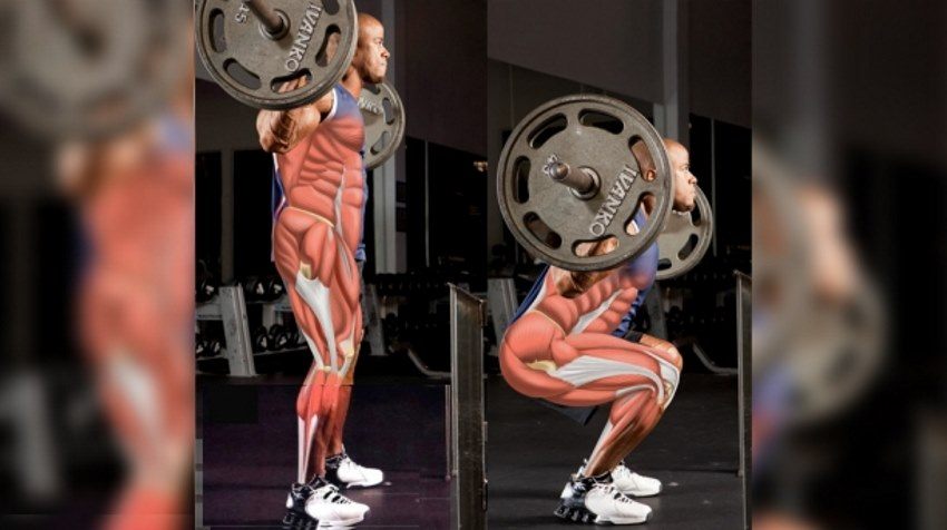 barbell-squat