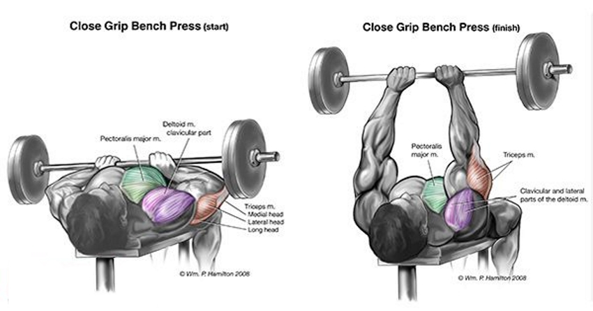 close-grip-bench-press