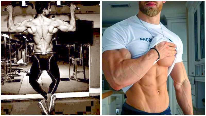 muscle-building-factors