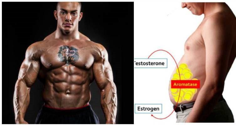 anti-estrogen-foods