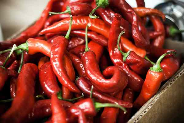 fat burning foods - capsaicin