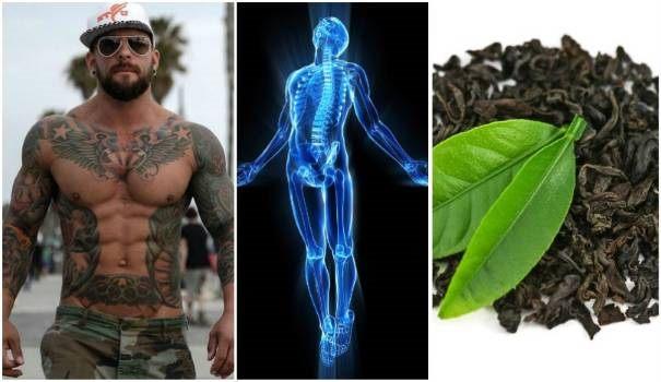 green-tea-fat-loss-benefits