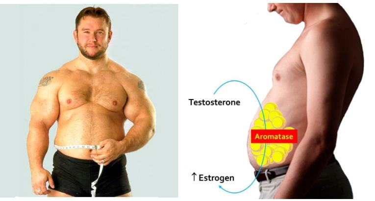 How to Lower Estrogen - Getting Rid of Too Much Estrogen
