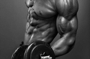 Lose Fat and Get Ripped with the Renegade Diet