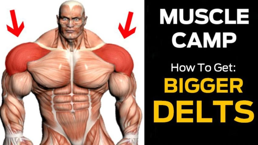 How to Build Shoulders Like Boulders