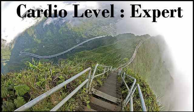 cardio_level_expert