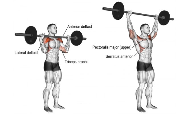 standing-barbell-military-press