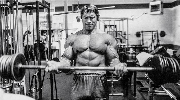 arnold-hypertrophy-program
