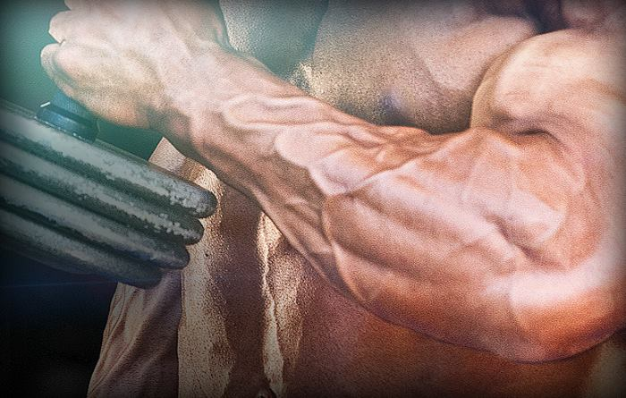 vascular-forearms