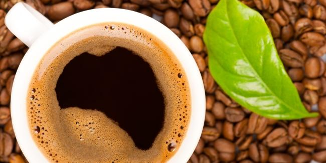 green coffee bean extract vs black coffee