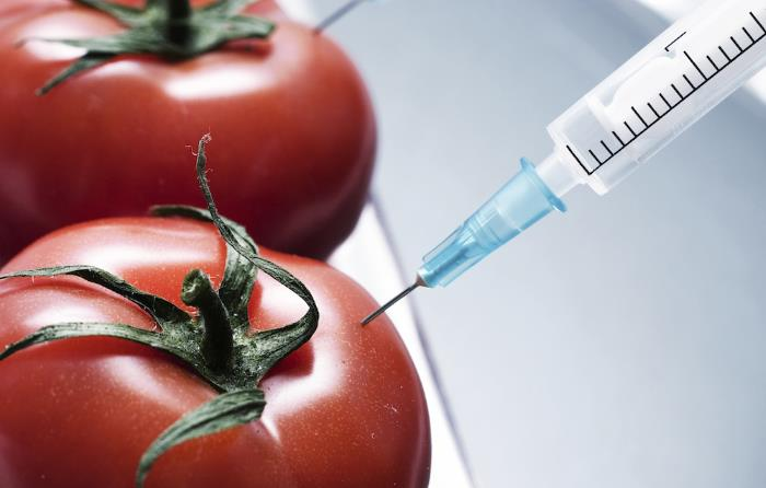 toxic-foods