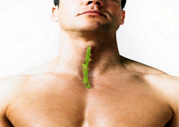 thyroid gland poor function