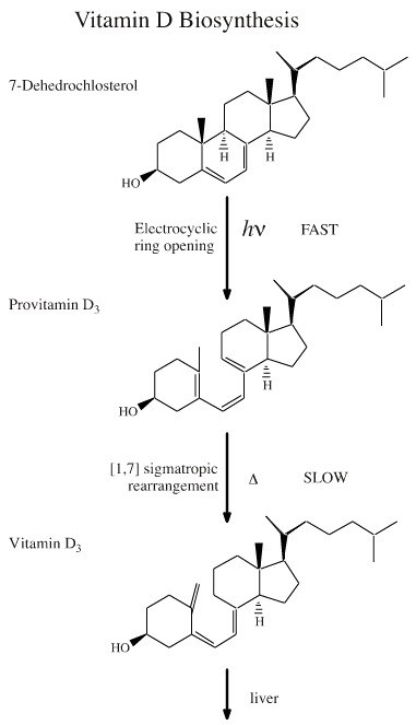 vitamin-D-testosterone