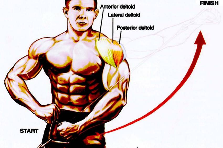 15-minute-shoulder-workout