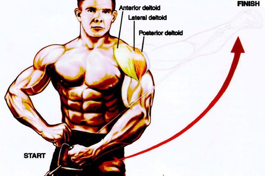 15-minute-shoulder-workout