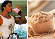 protein-supplements-guide