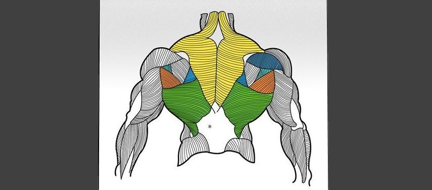 back-workout-mistakes