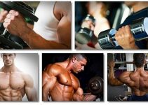 bodybuilding-workouts-for-beginners