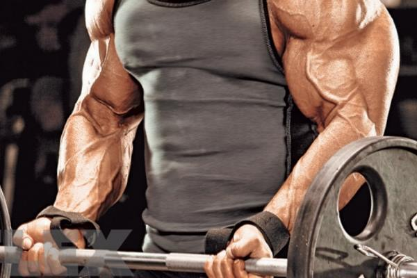 add size to your arms