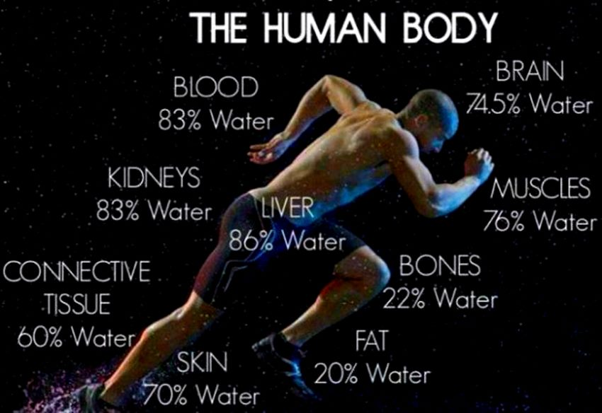 water-facts