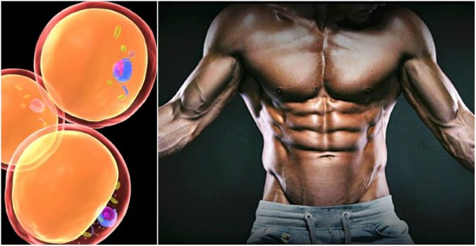 5-reasons-youre-not-getting-ripped
