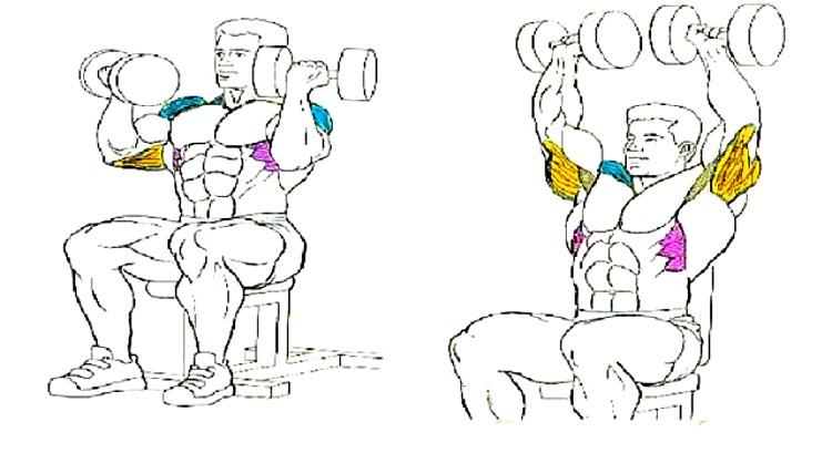 Arnold-Press-cover
