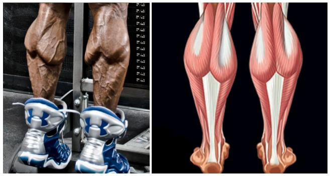 how-to-hit-those-stubborn-outer-calves