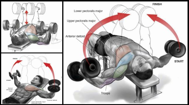 mass-building-moves-for-a-lagging-chest