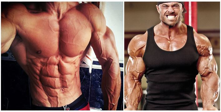 maximize-your-vascularity