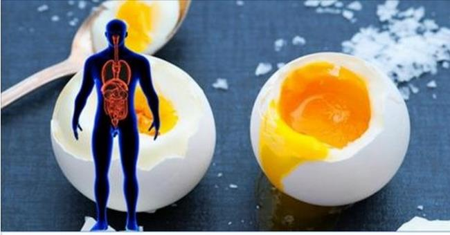 what-happens-when-you-eat-3-whole-eggs-every-day