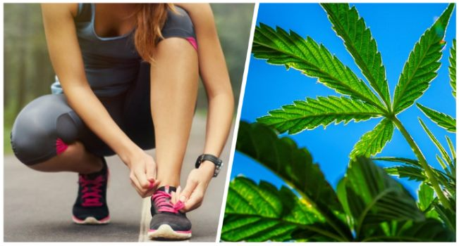 your-runners-high-and-a-marijuana-high-are-linked