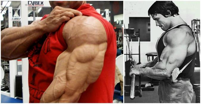 5-most-effective-exercises-for-building-your-triceps