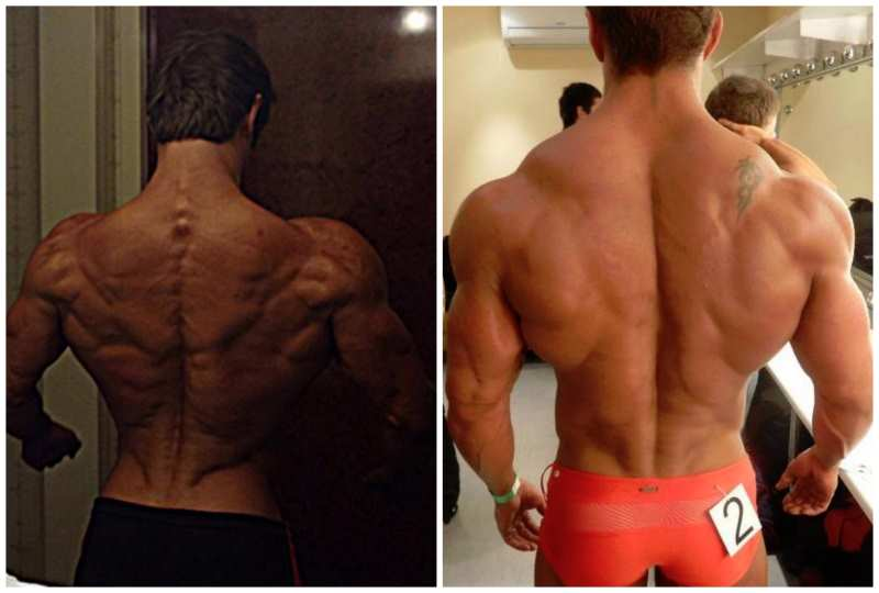 build-a-huge-back