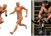 how-high-intensity-interval-training-can-help-get-you-shredded