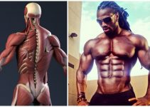 is-it-possible-to-increase-testosterone-levels-without-steroids