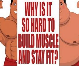 lose-fat-not-muscle1