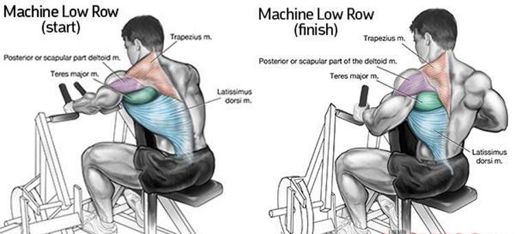 machine-low-rows