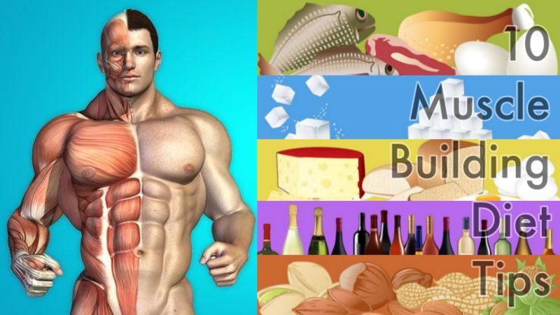 10-buscle-building-diet-tips