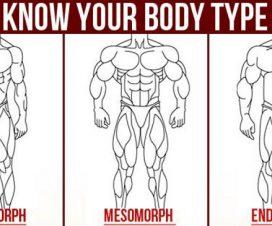 body-type
