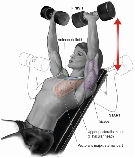 incline-dembbell-press