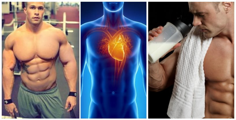 new-research-reveals-the-powerful-benefits-of-whey-protein