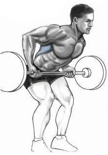 reverse-grip-barbell-row