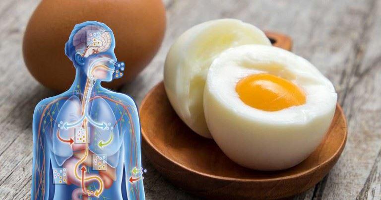 eggs-fat-loss-food