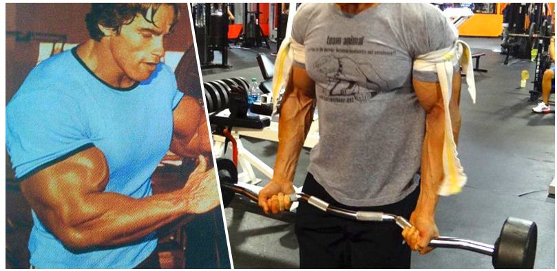 grow-your-biceps