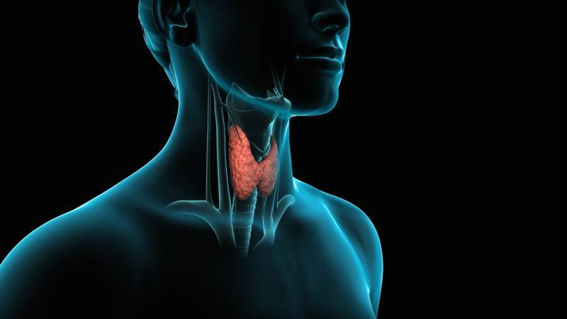 10-natural-ways-to-treat-hypothyroidism