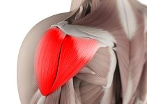 the-3-smartest-ways-to-train-shoulders
