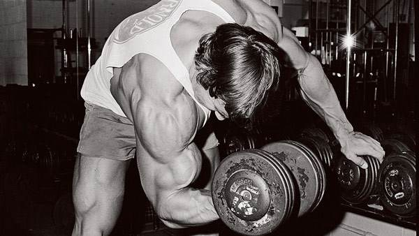 arnold-concentration-curl