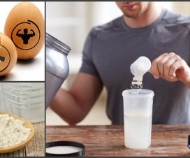 egg-protein-vs.-whey